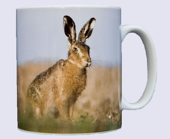 Coffee / tea mug with photo of a hare