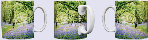 Wild animal mugs, Barn owl, Little owls, Brown hare, Bluebell woods, Water vole, Hedgehog